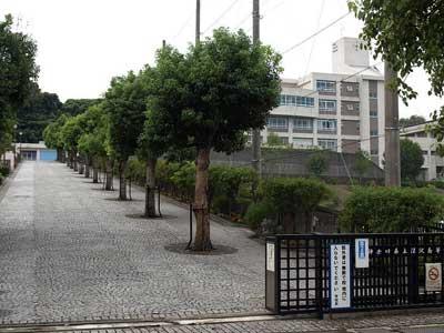 芳根京子 深沢高校