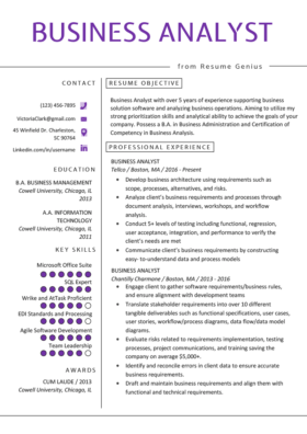 Operations Manager Resume Example Amp Writing Tips RG