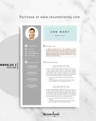 Resume-Template-Amberlux2-1-2018