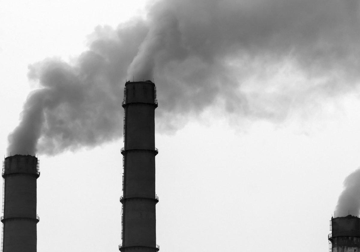 Libros de Problemas Ambientales y Enfermedades