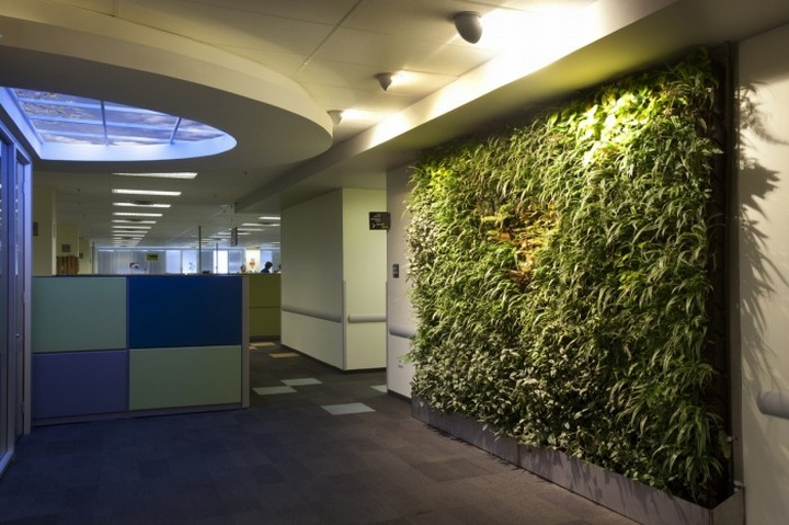 Biophilic Design Offices By Sky Factory