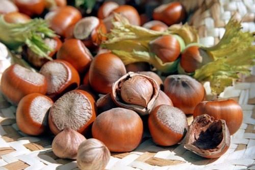Vitamina B5: beneficii pentru organism / Ce produse conțin Vitamina B5