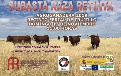 Subasta el Feria Agroganadera de Trujillo 2019 raza Retinta