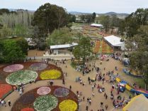 View from the top 2, Floriade