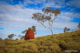 Termite mound at Karijini NP