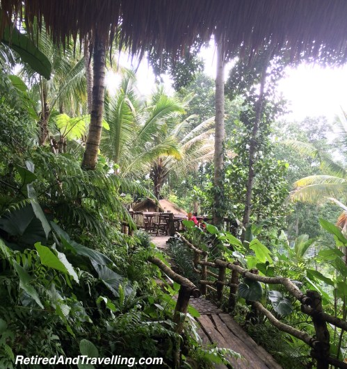 Rainforest Views - Ubud Treasures in Bali.jpg
