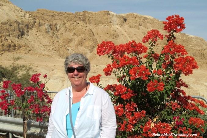 Israeli Desert Flowers - Masada and the Dead Sea.jpg