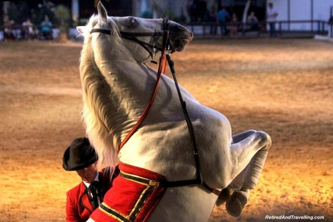 Horse Tricks - Andalusian Horse Show In Córdoba.jpg