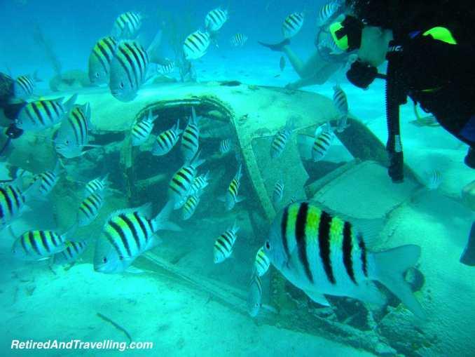 Scuba Dive Nassau James Bond Plane - Water Fun in Bahamas.jpg
