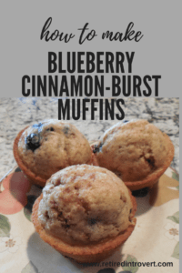 blueberry cinnamon-burst muffins