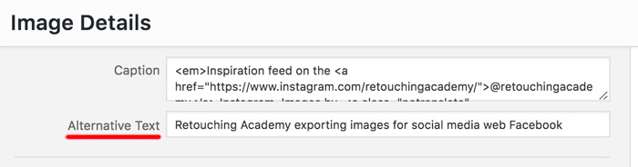 Exporting Images for Facebook, Instagram and Your Website