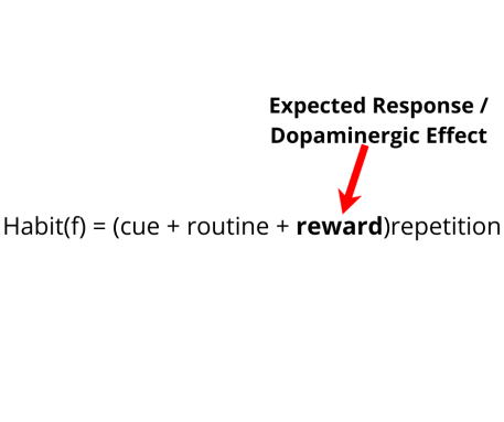 The Habit formula with a red arrow pointing to the reward component of the formula and referring to it as the expected dopaminergic effect.
