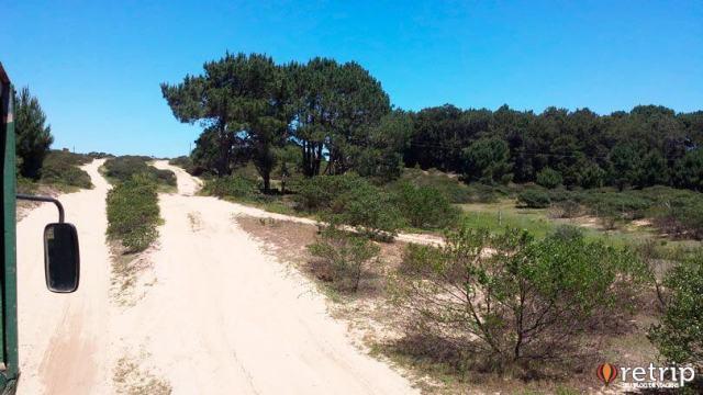 Caminho das dunas em Cabo Polonio
