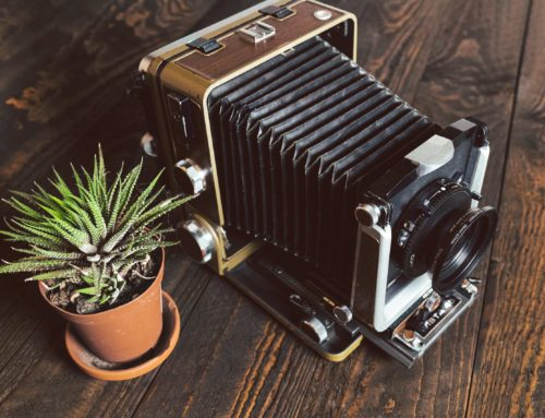 The Wista 45D Field Camera – A 4×5 large-format Camera.