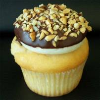 Drumstick: Vanilla cake topped with vanilla buttercream, dipped in chocolate and crushed nuts
