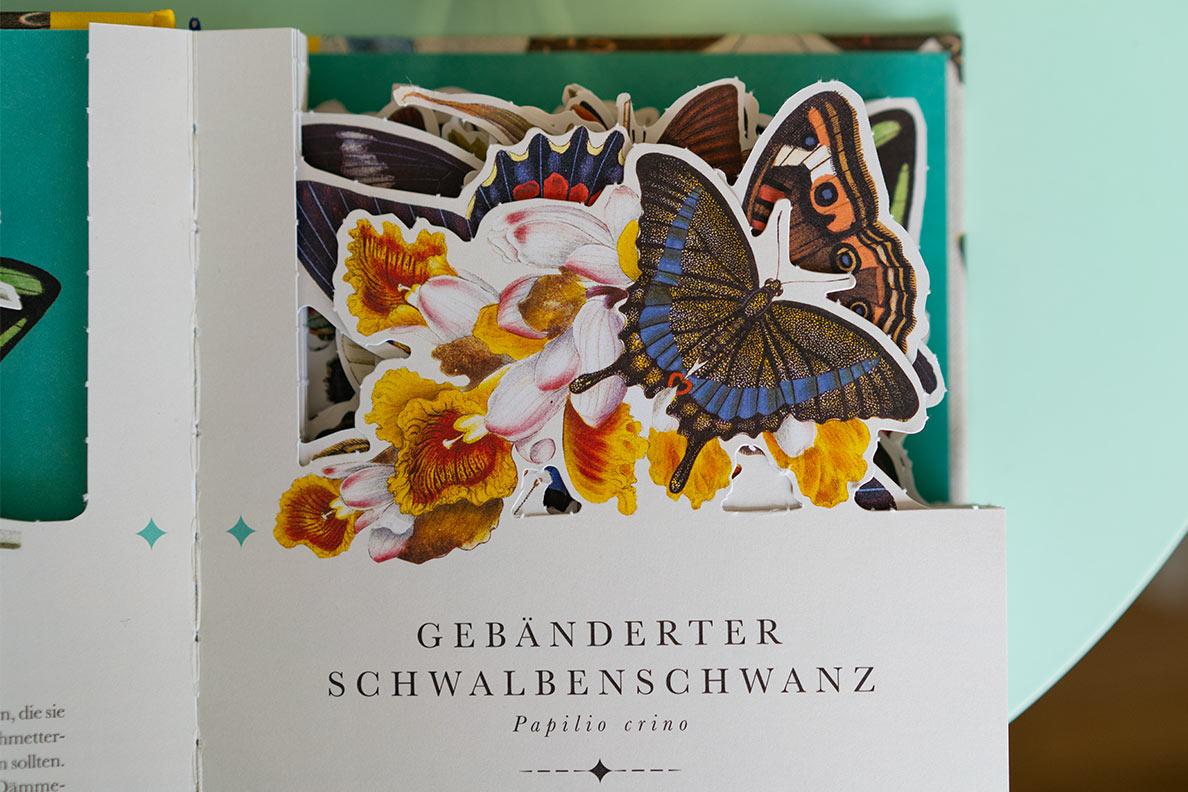Das Buch Naturelove Die 50 schönsten Schmetterlinge der Welt mit den schwebenden Schmetterlingen