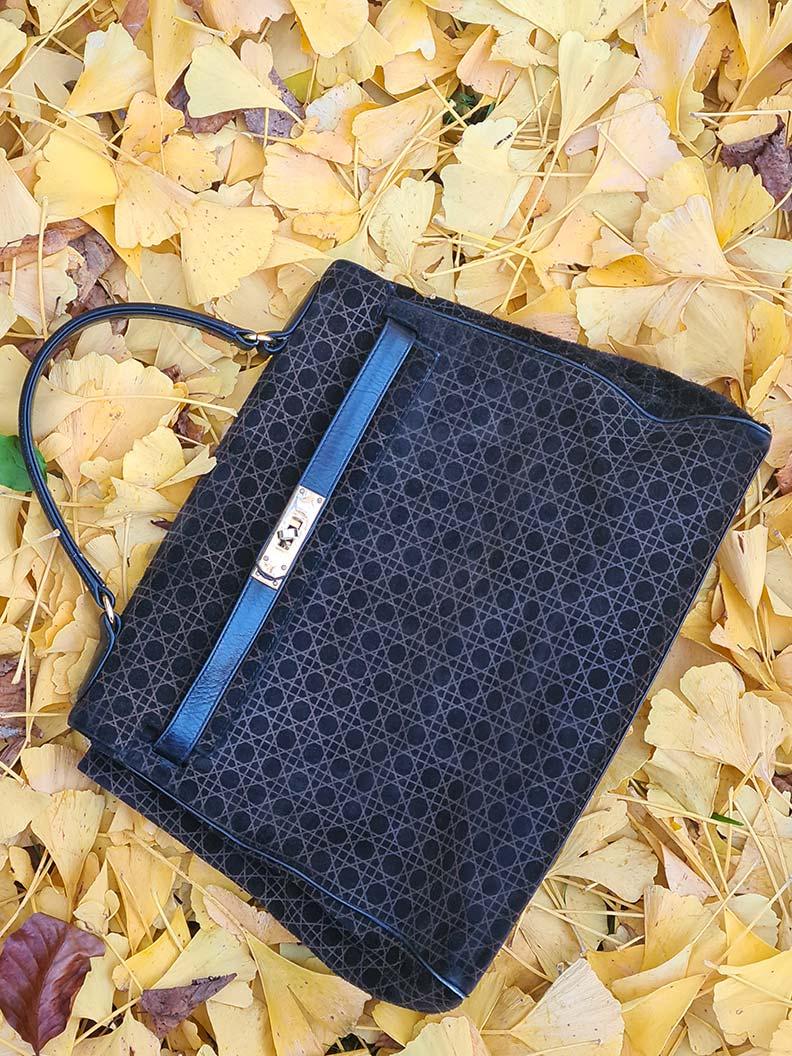 RetroCats Vintage-Tasche im Herbstlaub