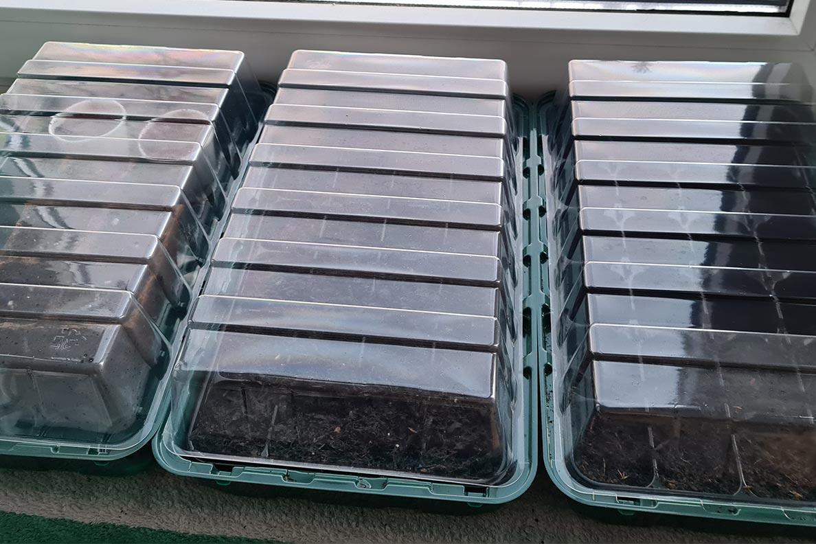 Ein Anzuchtkastenset für die Balkonbepflanzung