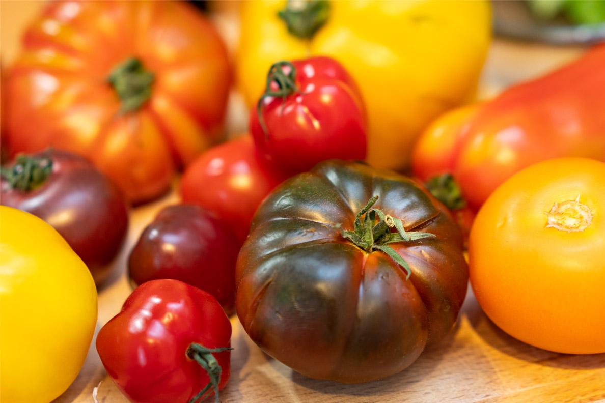Frische Tomaten von Fresh.Land