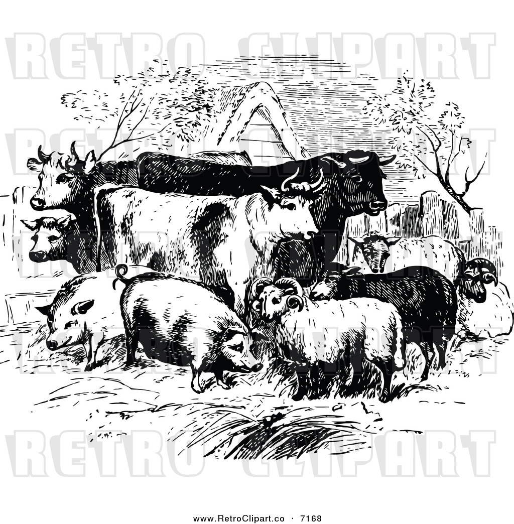 Royalty Free Farm Animal Stock Retro Designs