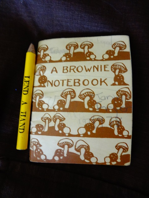 Brownie Notebook and Pencil