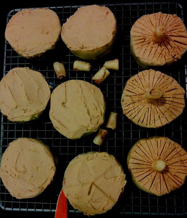 Mini Mushroom Cakes3