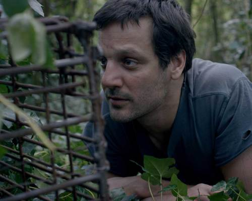 Furtive (Al Acecho) directed by Francisco D'Eufemia, Review