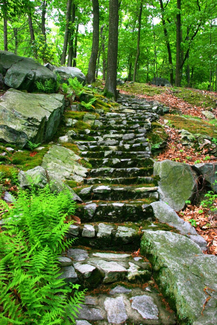 Russel Wrights Manitoga Amp Dragon Rock Historic