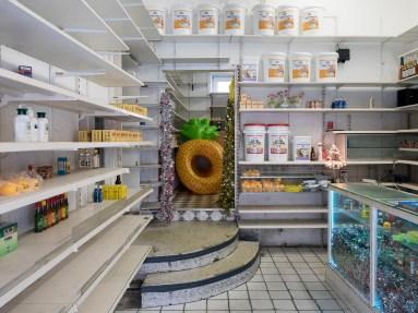 Mika Rottenberg, Cosmic Generator (working title), © Skulptur Projekte 2017, Foto: Henning Rogge