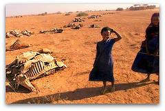 Dürre und Hungersnot