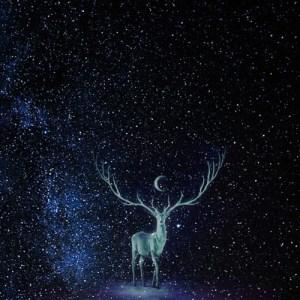 Deer Totem flyer