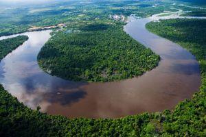 Amazon-rain-forest-in-Peru
