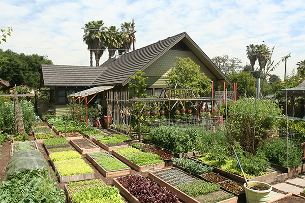 Permaculture Garden Produces 7000 Pounds Of Organic Food Per Year On A Tenth Of An Acre