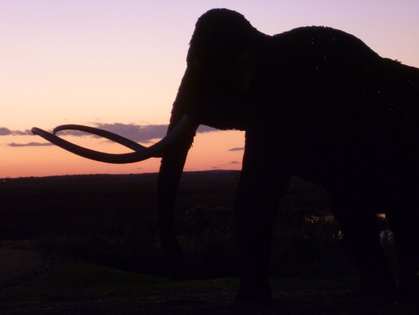 sunset with mammoth - fixed