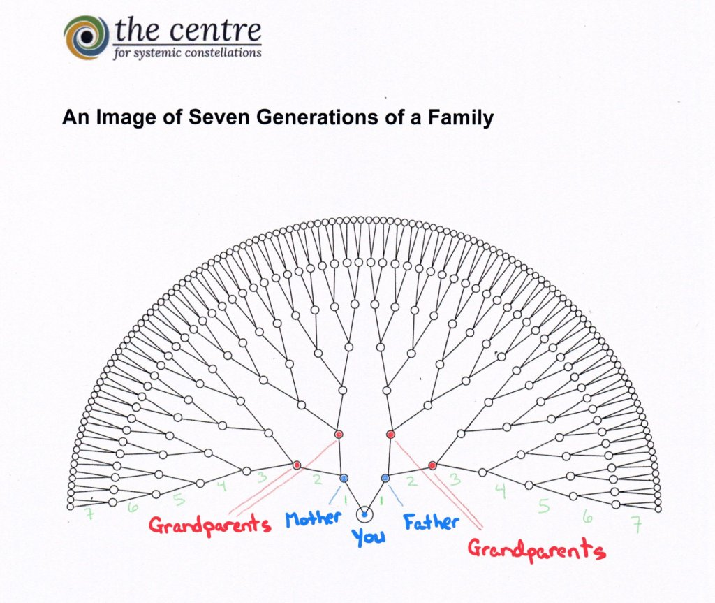An image of seven generations of a family. It resembles a peacock. You are in the bottom middle. Connected to you and situated above you are your mother and father. Branching out from them are their mother and father and so on back seven generations. This picture is courtesy of The Centre for Systemic Constellations.