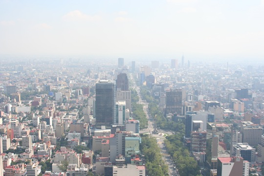 Pollution causes free radicals