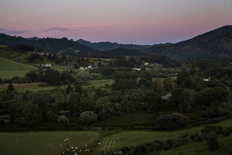 Nearly everyone in the tiny town of Petrolia, Calif., knows each other. Most are involved in marijuana growing to some degree. It's where Terri, a 22-year-old environmentalist and musician, arrived in the middle of the 2014 harvest season looking for trimming work.
