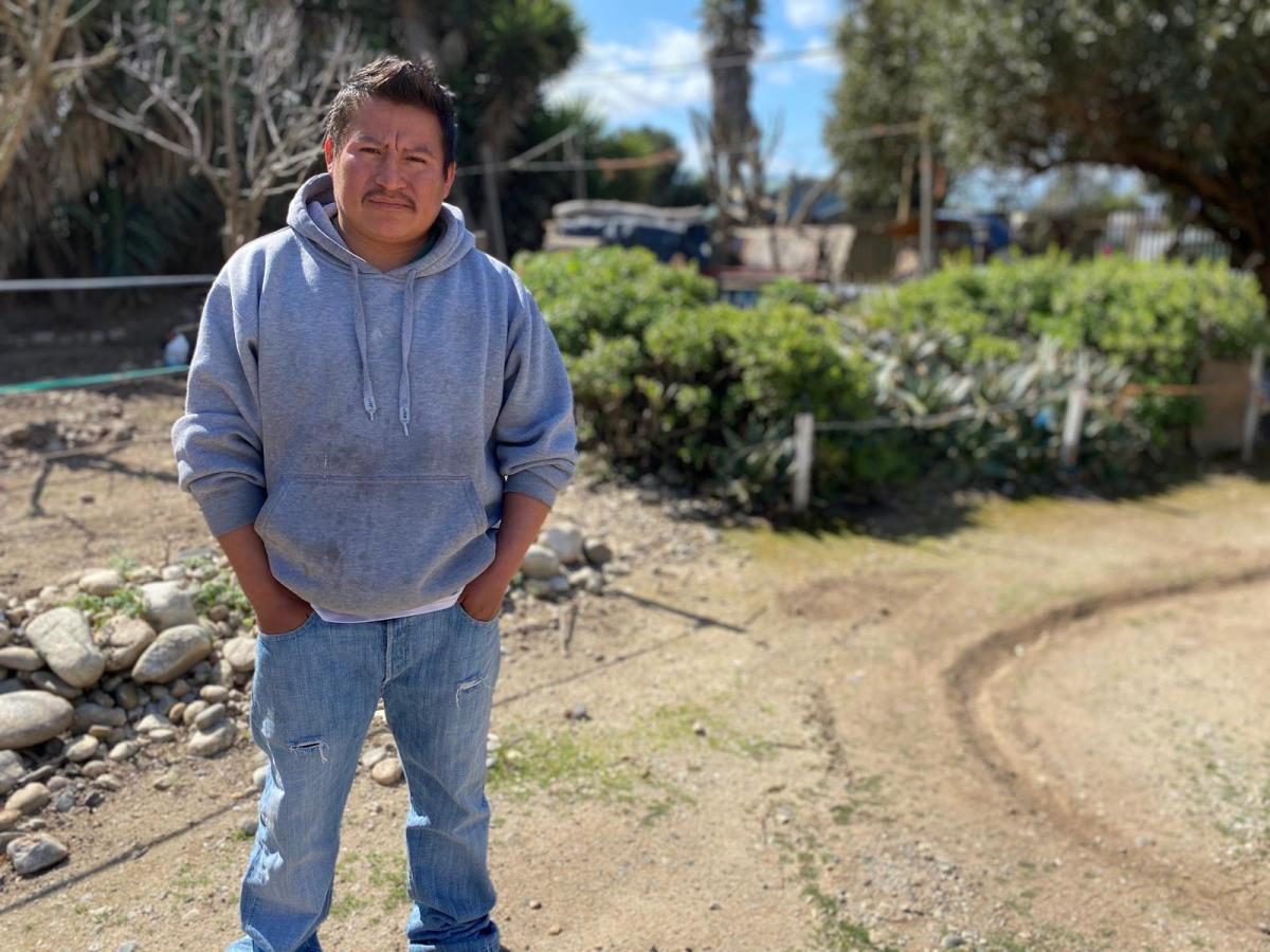 Nicolás Merino González, a farmworker in Greenfield, Calif, wears a gray hoodie and blue jeans as he stares at the camera.