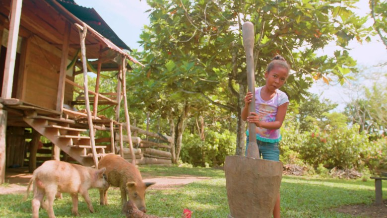 A young girl holds a pestle. Next to her are two baby pigs.