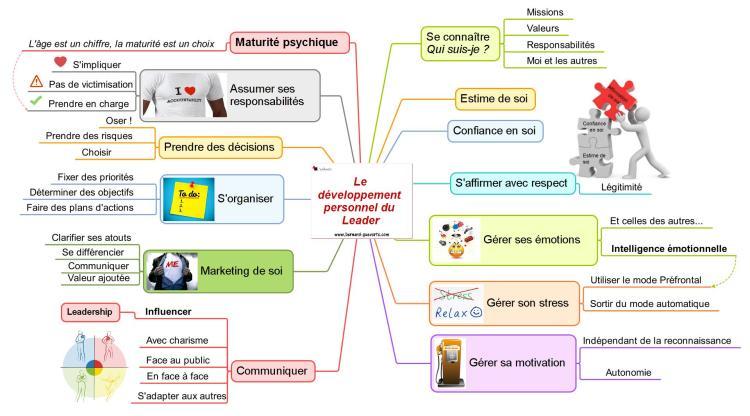 Mind mapping qui reprend les éléments du développement personnel du leadership