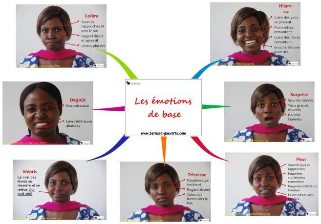 Les 7 émotions de base de Paul Ekman