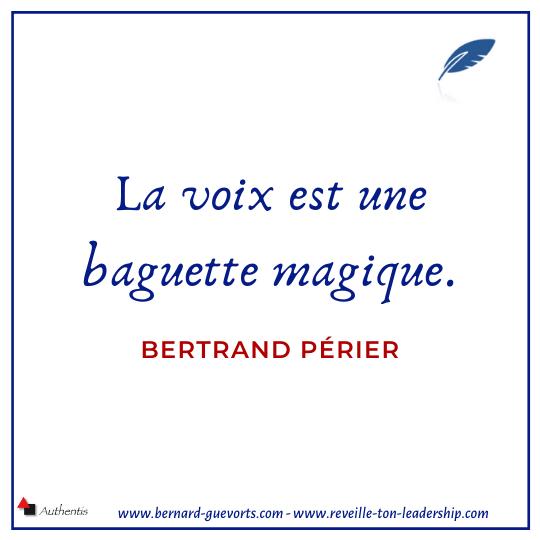 Citation de Bertrand Perier sur la voix
