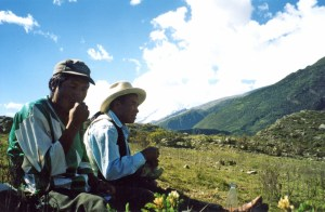 a campesinos beim coca kauen - vicos, peru, 2004. Sandra