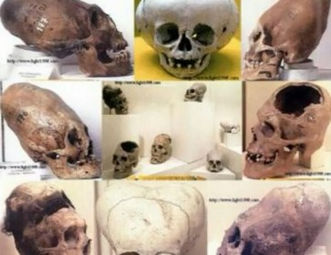 Giant_Skulls