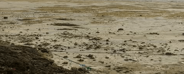 Bahama Beach Drys Up: More Biblical Judgment on the WATERS!