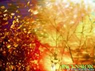 'Incension' series. 'The Copper Cauldron' theme. 2016. P.Surana. Original Photography, digital art.