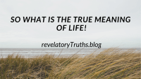 So What is The True Meaning of Life?
