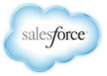 Salesforce.com Support Services