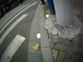 Children sometimes poop in the streets here. See the TP?