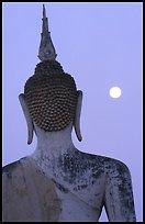 buddhabackmoon